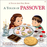 Touch of Passover - A Touch and Feel book