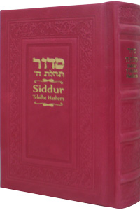 Siddur Annotated English Compact - Leather Hot Pink 4x6