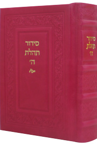 Siddur Annotated Hebrew Compact Ed. Leather Hot Pink 4 x 6