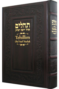 Tehillim with English Cherry Leather 5½ x 8½