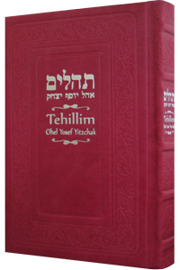 Tehillim with English Hot Pink Leather 5½ x 8½