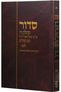 Siddur Annotated Hebrew with English Instructions Large Edition