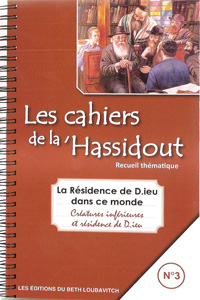 Notebooks of Chassidus Vol. 3 - French