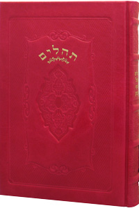 Tehillim Large Leather Hot Pink 6 x 9