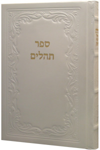 Tehillim Large Leather White 6 x 9