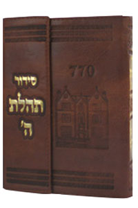 Siddur Medium New, with Magnet Leather-like Brown